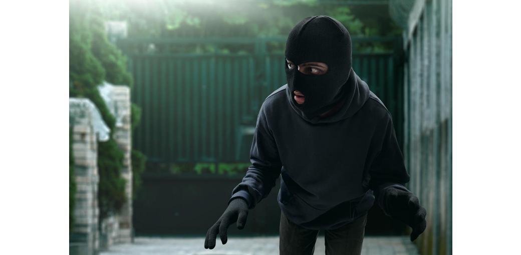Jak utrudnić zadanie złodziejowi? O ryglach i zamkach ogrodzeniowych